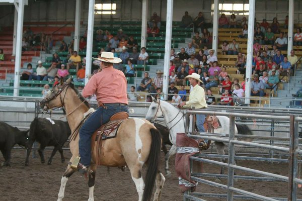 2014 Cassia County Fair Pictures on Facebook